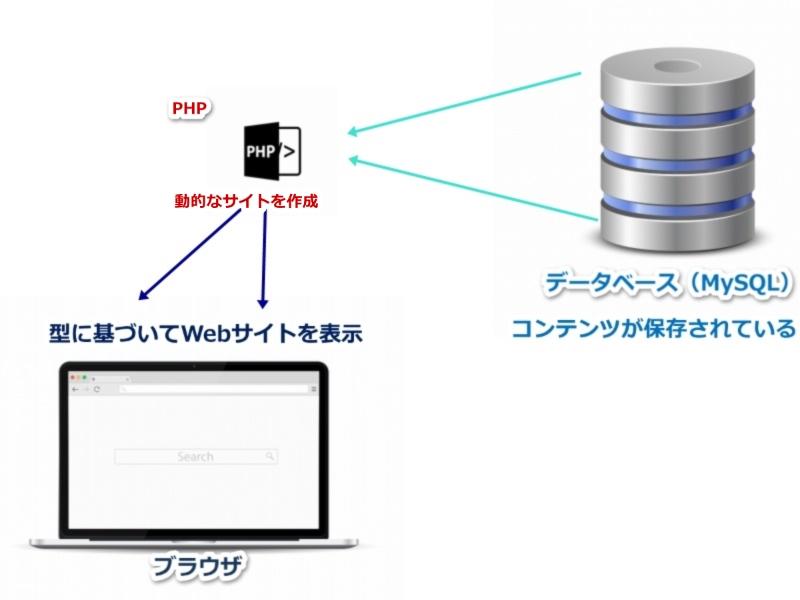 PHP データベース