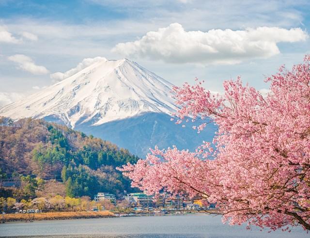 日本の仕事について知ろう